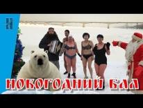 Новогодний бал в клубе Тонус. 30.12.2017 г.